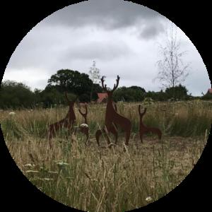 Example of public artwork - Deer sculptures